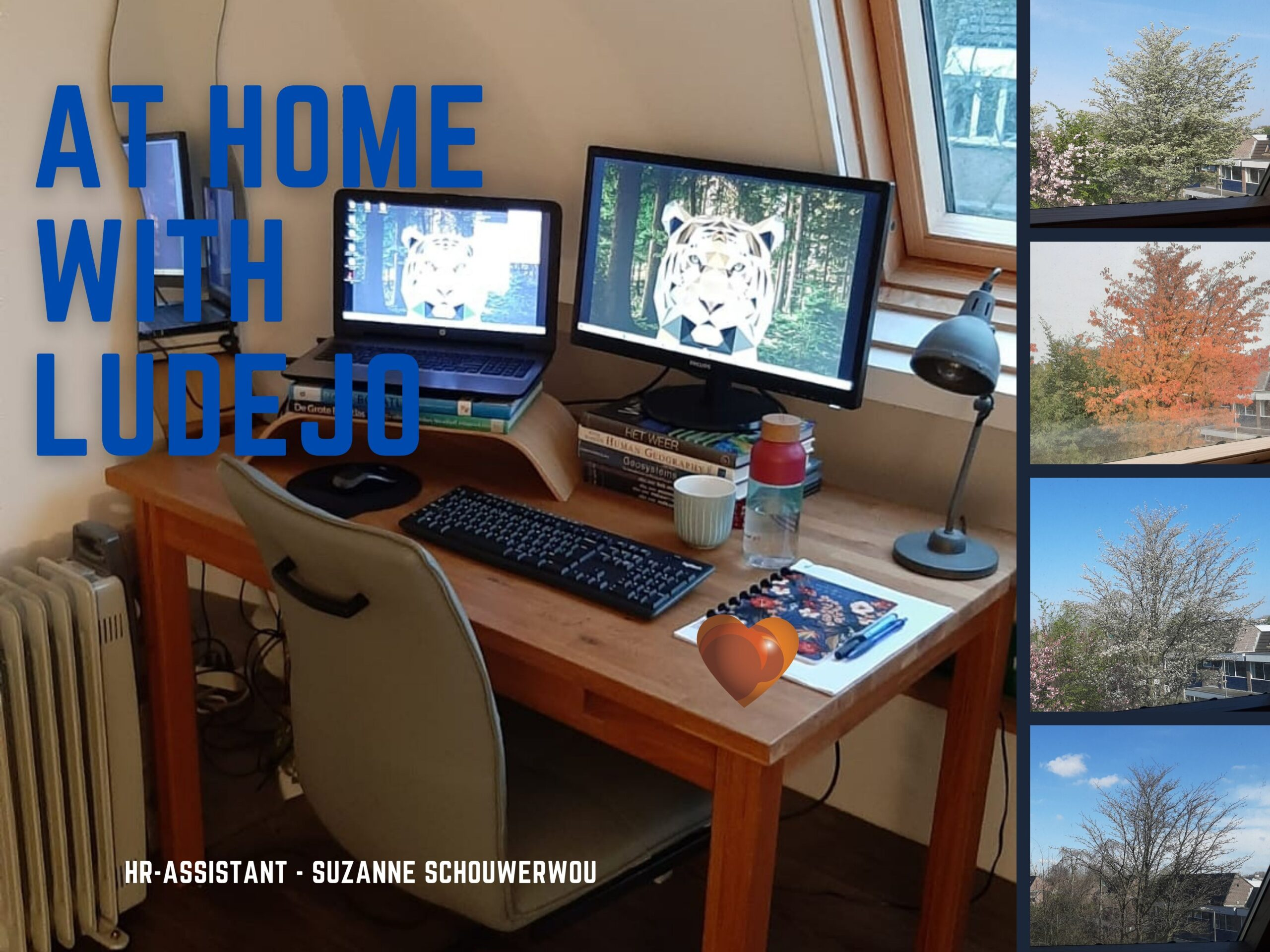 At Home with Ludejo - HR Assistant - Suzanne Schouwerwou