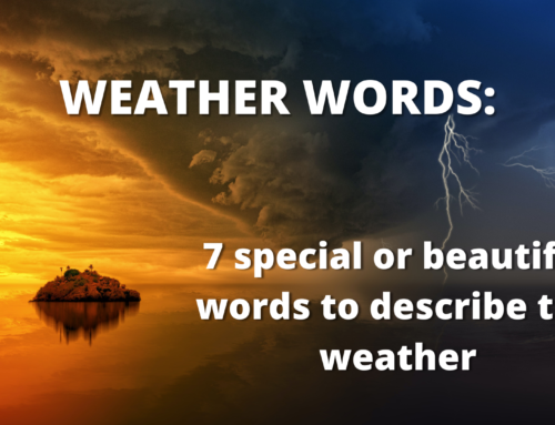 Weather words: Seven special or beautiful words to describe the weather
